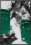 På billedet ser du variationen Green Paint, Illustration m. ramme fra brandet House of Sander i en størrelse H: 3 cm. B: 70 cm. L: 100 cm. i farven Multifarvet