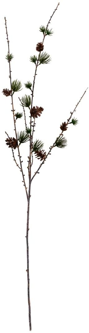 På billedet ser du variationen Gren, Larch w. cornes fra brandet House Doctor i en størrelse H: 97 cm. B: 15 cm. i farven Natur